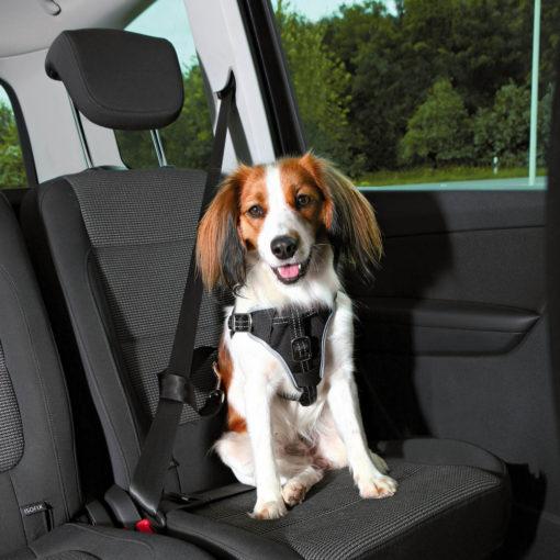 Car Harness Dog Comfort