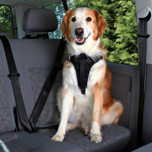 Car Harness Dog Comfort.
