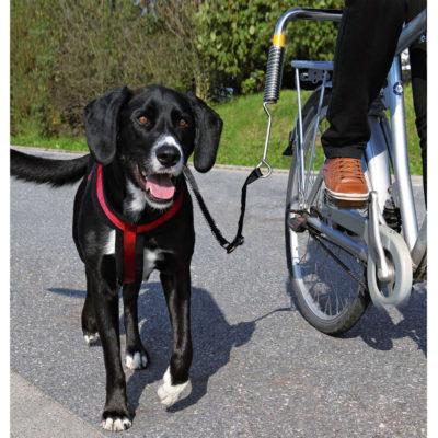 Dog Biker Set