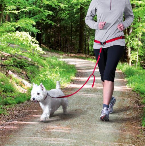 Small Dog Walking Jogging Lead