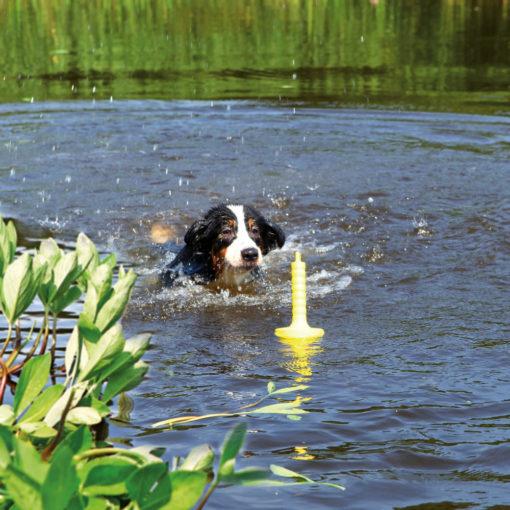Floatable Dog Toys