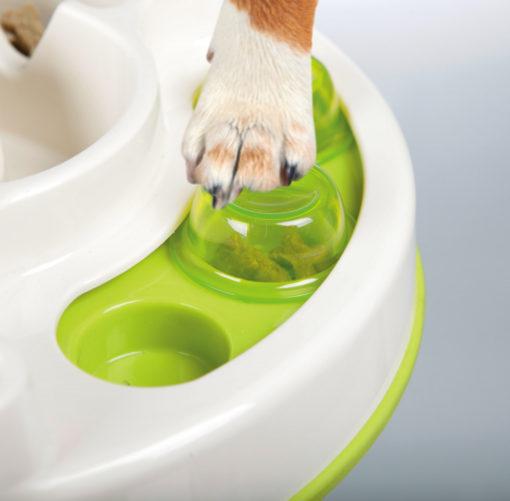 Dog Using Slide & Feed Strategy Game 32036