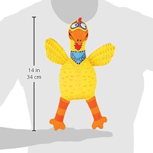 Suspicious chicken size chart